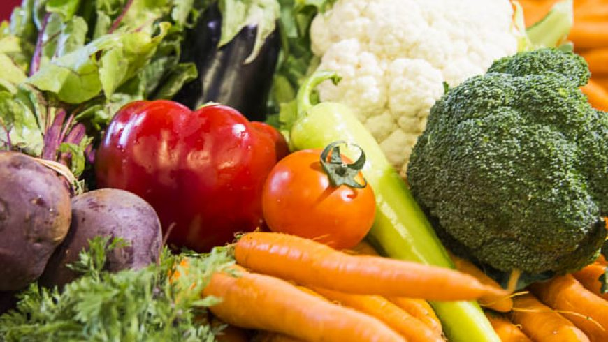 Plants in the human diet