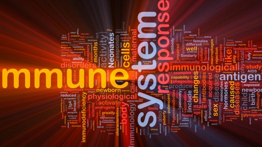 The Immune System and Your Health