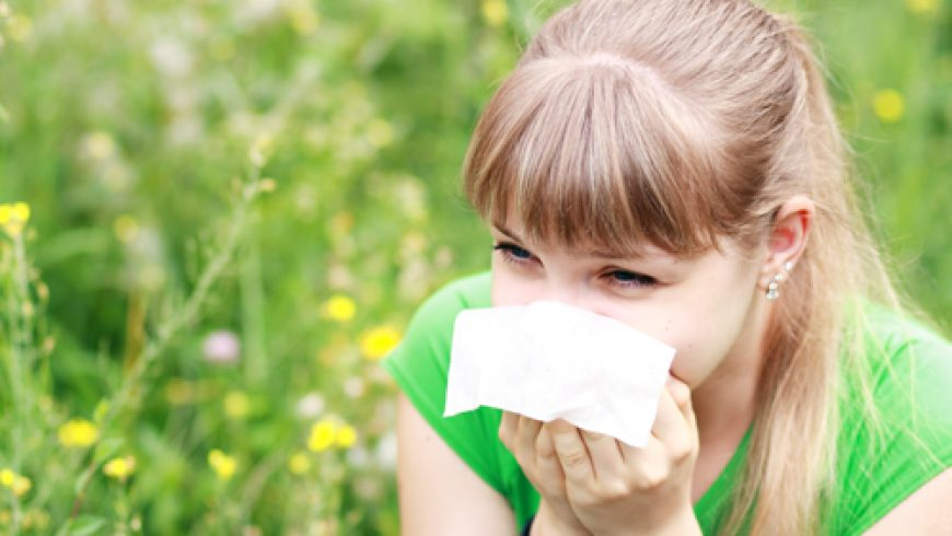 Stop hayfever in its tracks